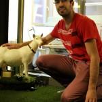 Stefan Hanna Goat-Simulator